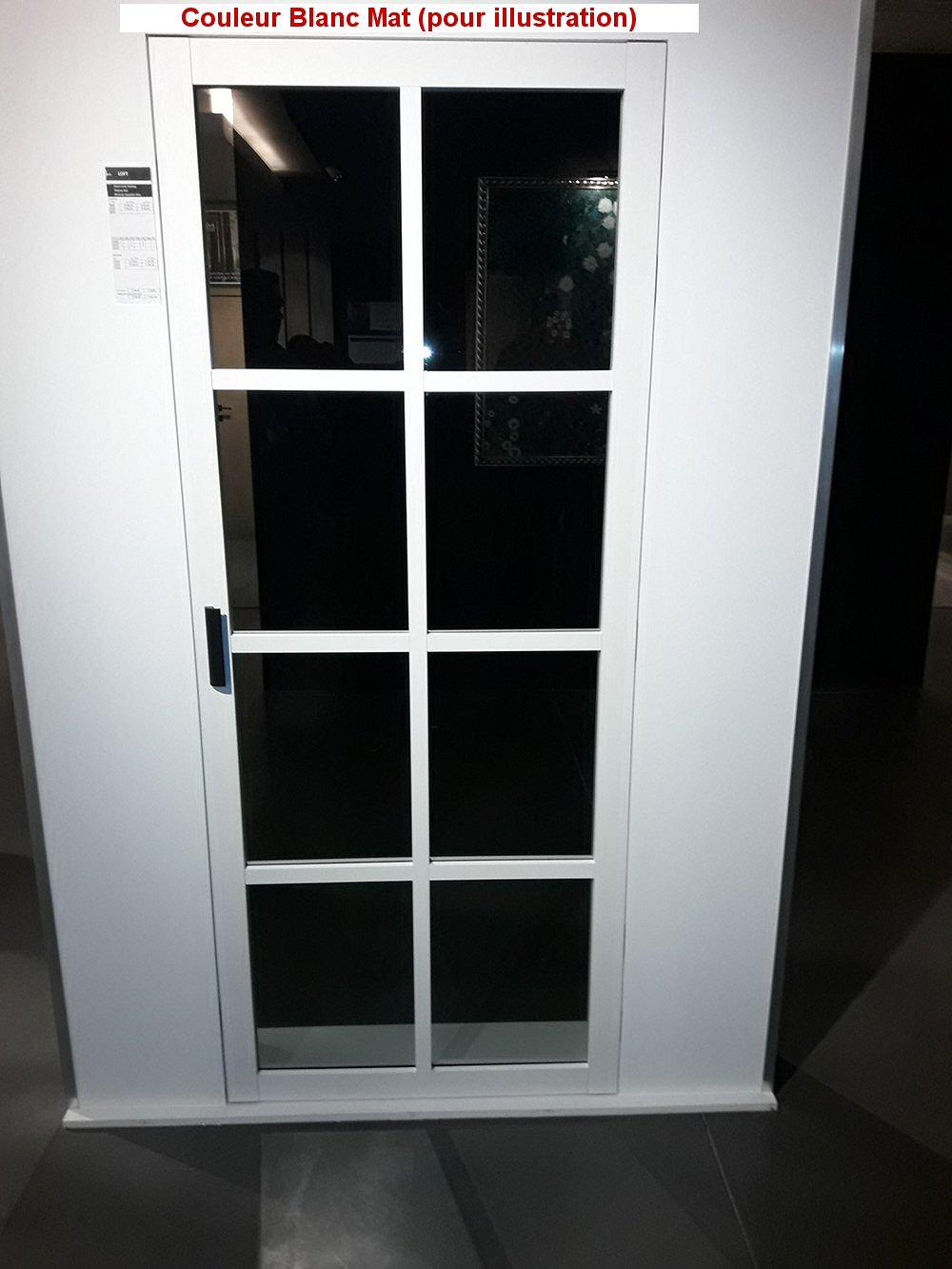 Couleur Porte Interieur Blanc Gris thys steel look classic – 3r – verre fumé gris